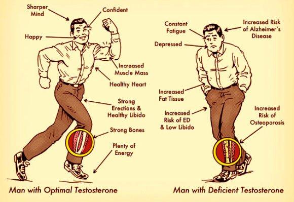 9 sildid testosterooni madala
