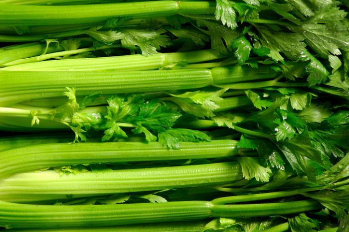 الكرفس حقائق التغذية – السعرات الحرارية، والكربوهيدرات، والفوائد الصحية من الكرفس