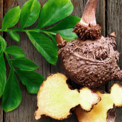 Services de santé de Glucomannan – extrait de racine utilisé pour traiter le cholestérol et la constipation