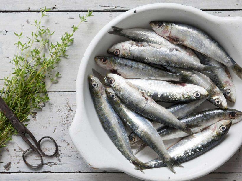 Sardine Nutrizionali e benefici per la salute