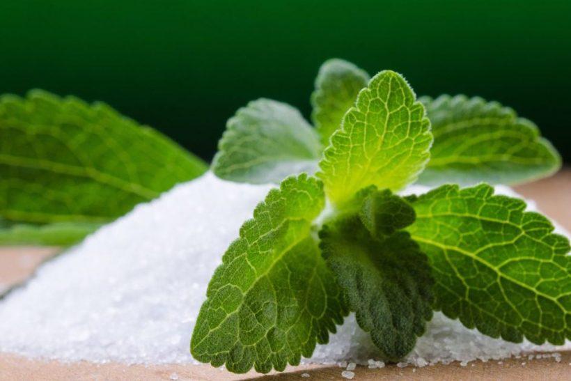 Stevia de la valeur nutritive: Effets secondaires, avantages et plus