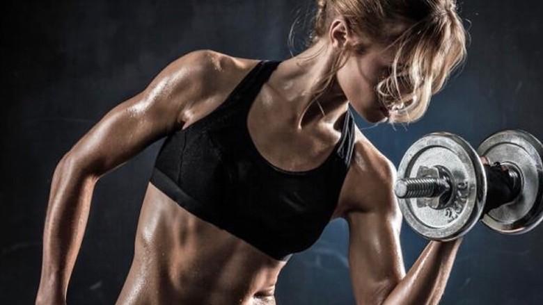 Comment construire la taille du muscle au lieu de simplement la force?